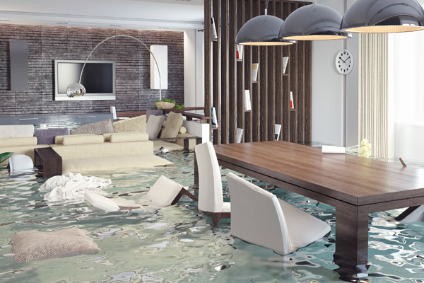 Here's What You Should Do if Your House or Business Floods