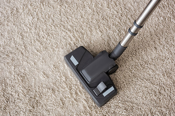 How To Remove Mold From Carpet In Your Richmond Home