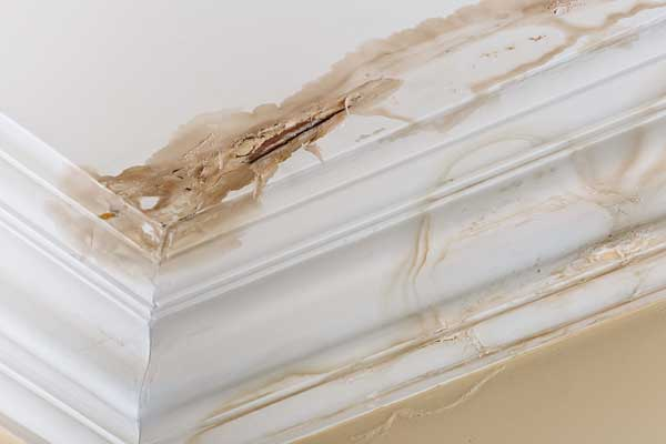 How to Avoid Water Damage in Richmond